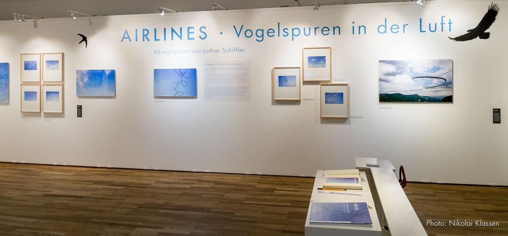 AIRLINES - Vogelspuren in der Luft, Ausstellung im Museum Mensch und Natur, Schloss Nymphenburg, München