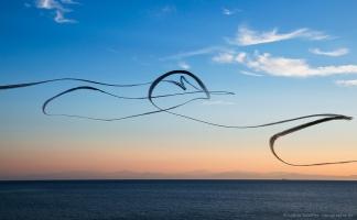 AIRLINES XIV-1 · Möwe vor der Silhouette von Korsika · Pomonte · Elba · 2014