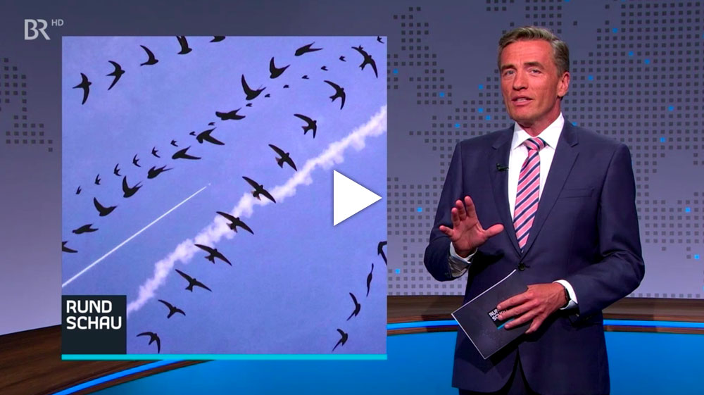 Vogelspuren - Fotoausstellung im Museum Mensch und Natur - Rundschau, BR Fernsehen