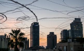 AIRLINES XVIII-5 · Mauersegler und Tauben · Tel Aviv · 2:02 Minuten