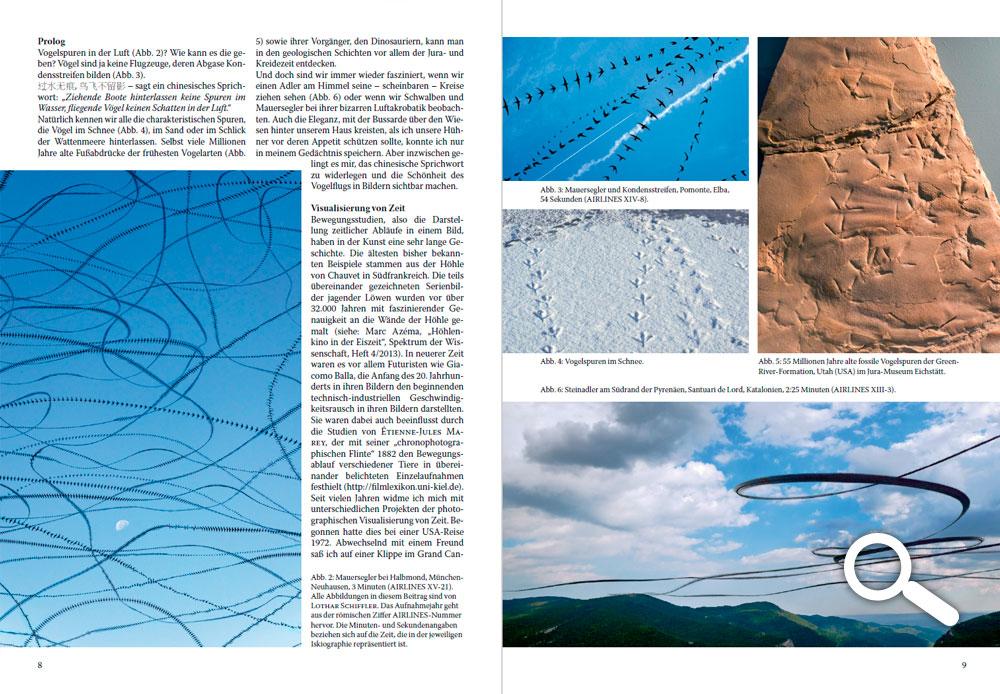 AIRLINES – Vogelspuren in der Luft - Archaeopteryx 35, Jura-Museum Eichstätt - 2018