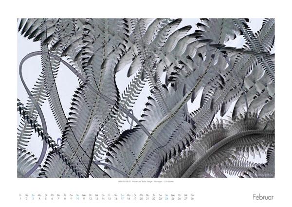 AIRLINES - Vogelspuren in der Luft - Iskiographien von Lothar Schiffler - Kalender 2019 DIN A2 quer - Februar
