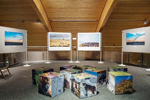 AIRLINES · Vogelspuren in der Luft · Iskiographien von Lothar Schiffler, Sonderausstellung im Haus der Natur, Feldberg, Schwarzwald