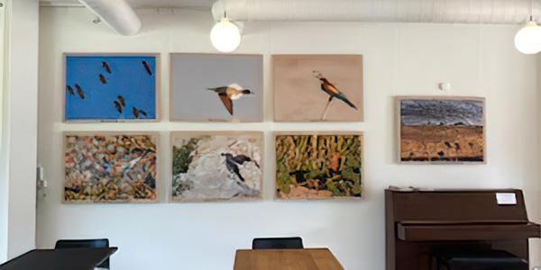 Ausstellung über die Zugvögel Israels von Klaus Bjerre im Vadehavscentret